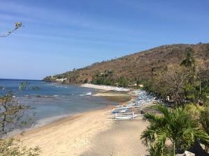 Amed shoreline