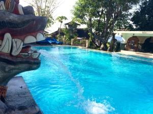 Pool at Café Amed Hotel