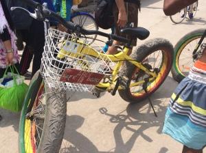 Big wheeled bike