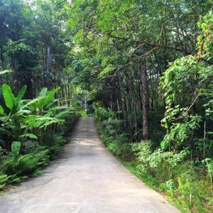 Streets of Koh Yao Yai