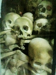 Skulls in the Killing Cave