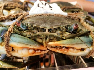 Crab in Chinatown