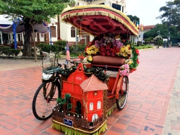 Customized Rickshaw