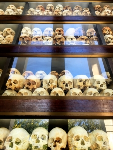 Skulls of victims found in Memorial at Killing Fields