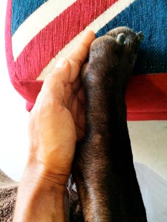 Same size hands