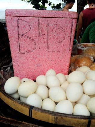 Balut Eggs