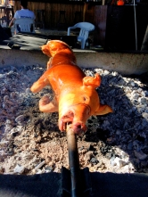 Lechon - Roasted suckling pig