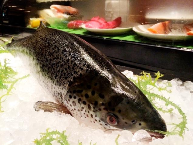 Radisson dinner buffet - sushi
