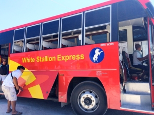 White Stallion Bus