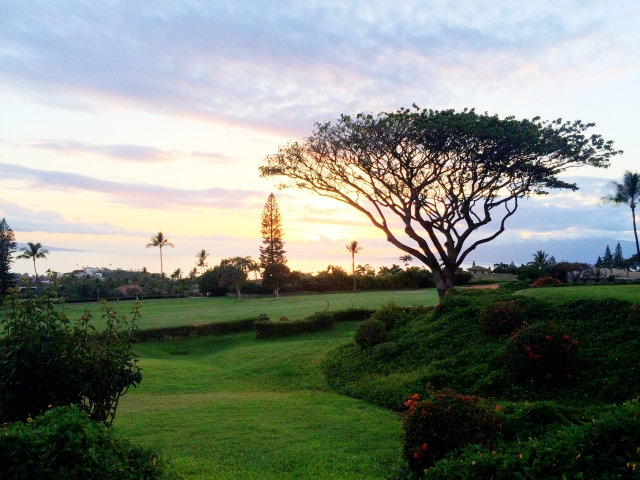 View from our condo in Kaanapali