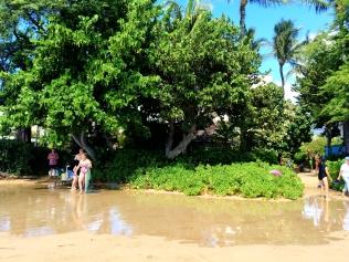 Kaanapali beach taken by a wave