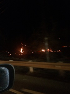 Fires still burning roadside
