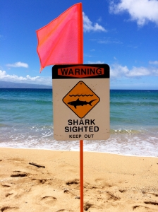 Shark sign at DT Flemming Beach