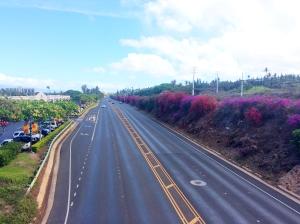 Honoapali Highway, Kaanapali