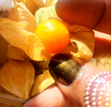 Physalis (Peruvian ground cherry