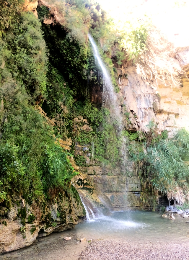 King David waterfall