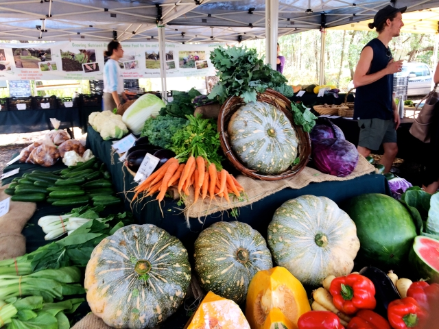 Noosa Farmer's Market