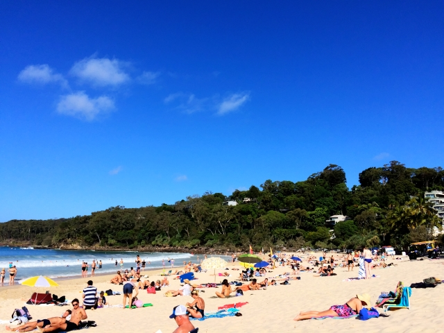 Noosa Surf Club Beach
