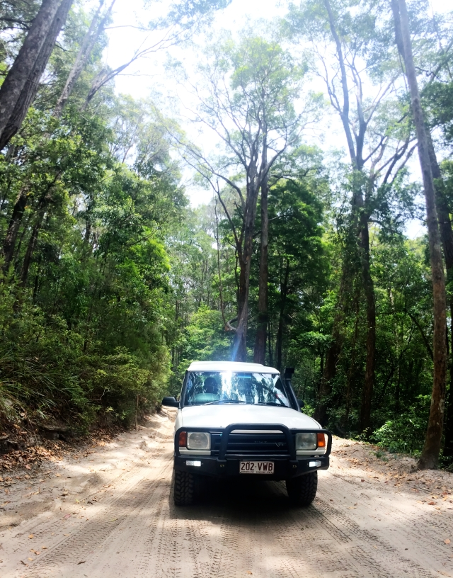 Rental suv on Fraser Island