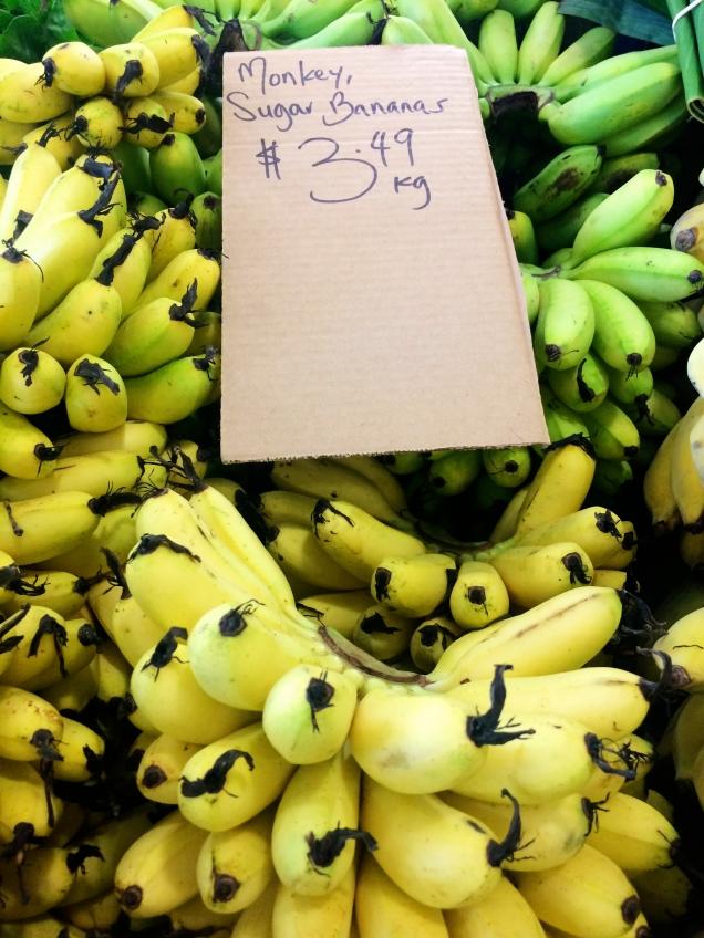 """monkey sugar bananas"""