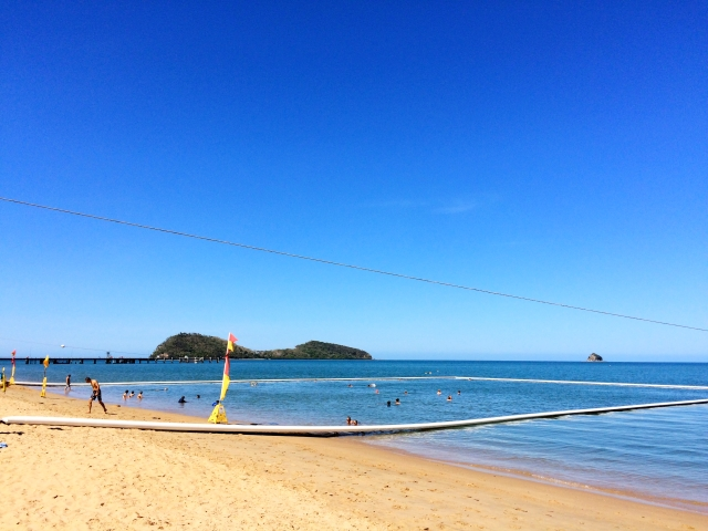 Netted swimming area in Palm Cove