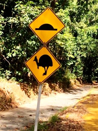 Road sign warning drivers