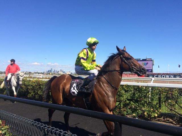 Flemington Racetrack - Melbourne