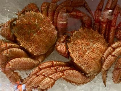 Horsehair crab at Omicho Market, Kanazawa